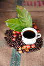 Coffee cup and fresh raw coffee beans Stock Photography
