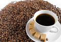Coffee cup on pile of beans Stock Image