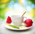 Coffee cup with red tulips in shiny leaves background Royalty Free Stock Photos