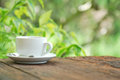 Coffee cup on wood table with green background old Royalty Free Stock Images