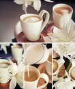 Coffee cups with flowers Stock Photo