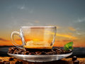 Coffee cups of steaming in the early morning Royalty Free Stock Images