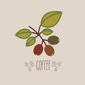 Coffee design over beige background vector illustration Royalty Free Stock Photo
