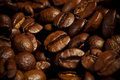Coffee grains close up Royalty Free Stock Photos