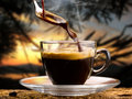 Coffee hot served in a small cup at sunset Stock Image