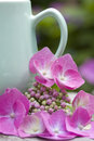 Coffee mug with hydrangea detail of a and pink Stock Photo