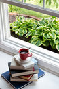 Coffee on piled books next to glass window reading time concept cup of hot black top of at the open close hosta plants Royalty Free Stock Photo