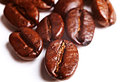 Coffee roasted beans on white background Stock Photos