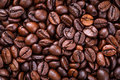 Coffee seed Stock Photos