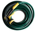 Coiled green garden hose Stock Image