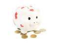 Coin box pig Royalty Free Stock Photos