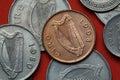 Coins of Ireland. Celtic harp Royalty Free Stock Photo