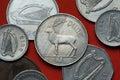 Coins of Ireland. Red deer (Cervus elaphus) Royalty Free Stock Photo