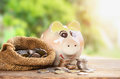 Coins in sack and piggy bank for money saving financial Royalty Free Stock Photo