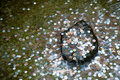 Coins in a wishing well at temple of silver pavilion kyoto japan Stock Photos