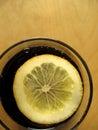 Cola del limón Foto de archivo