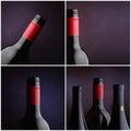 Colagem do frasco de vinho - quatro imagens Foto de Stock