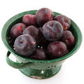 Colander fresh plums Stock Photography