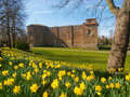 Colchester Castle in Spring Stock Photo