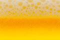 Cold beer Royalty Free Stock Image