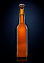 Cold beer bottle with drops, on black Royalty Free Stock Photo