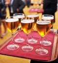 Cold beers, bartender, catering service Royalty Free Stock Photo