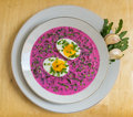 Cold beet soup (chłodnik litewski) with egg Royalty Free Stock Photo