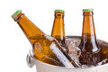cold bottles of beer in bucket with ice on white background. Royalty Free Stock Photo