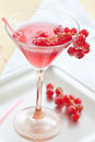 Cold cocktail with red currant pink fresh Stock Photography