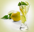 Cold drink with lemon Royalty Free Stock Photo