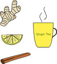 Cold and flu natural relief herbal tea set. Ginger, lemon, lime, cinnamon. Isolated image. Hand drawn style.