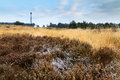 Cold heathland landscape winter moorland at the posbank and veluwe zoom in the netherlands with the observation tower brandtoren Royalty Free Stock Image