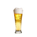 Cold lager beer in glass  on white Royalty Free Stock Photo