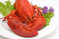 Cold Lobster Stock Photos