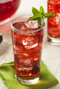 Cold refreshing berry hibiscus ice tea iced with mint Stock Image