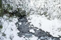 Cold river amongst snow clad banks and trees Stock Photo