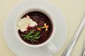 Cold soup borscht (borshch) Royalty Free Stock Photo
