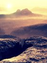 Cold spring land in colorful mist. Rocky gulch full of golden fog and Sun is hidden in mist.