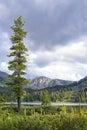 Cold Summer Mountain Landscape