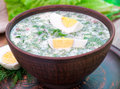 Cold vegetable kefir soup with eggs and greens Royalty Free Stock Photos