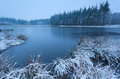 Cold winter morning over wild lake friesland netherlands Royalty Free Stock Photo
