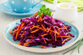 Cole Slaw Salad Royalty Free Stock Photo