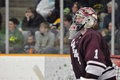 Colgate Alex Evin in NCAA Hockey Game Stock Images