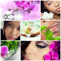 Collage beauty makeup spa theme photos different models orchids lily flowers bamboo Stock Photos
