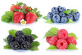 Collage berries strawberries blueberries berry fruits isolated o Royalty Free Stock Photo
