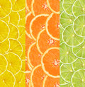 Collage with citrus-fruit of lime. lemon and orange slices Royalty Free Stock Photo