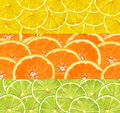 Collage with citrus-fruit of lime, lemon and orange slices Royalty Free Stock Photo