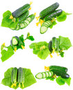 Collage  of Cucumbers on white background. Royalty Free Stock Image