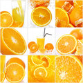 Collage of different orange fruits Royalty Free Stock Photo