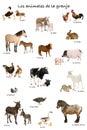 Koláž z zvířata v španělština